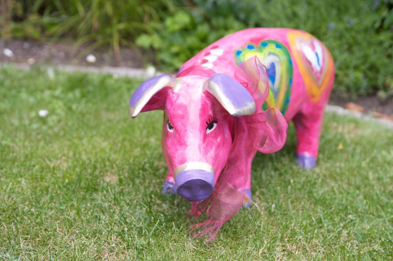 Pig (face) - LightMeter